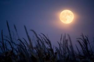 mond-nacht-dunkelheit